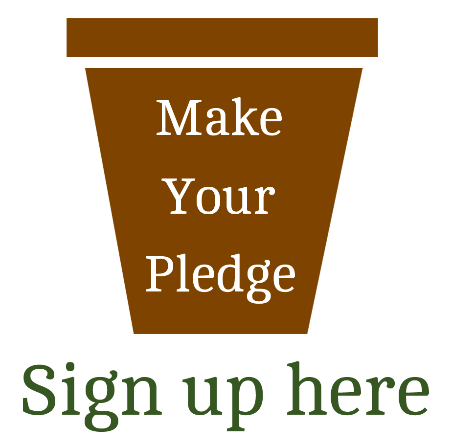 Make your pledge